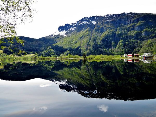 Beauty In Nature Calm Day Growth Hardanger Idyllic Lake Mountain Mountain Range Nature No People Non-urban Scene Outdoors Pedal Boat Refection Reflection Scenics Sky Tranquil Scene Tranquility Tree Water Western Norway