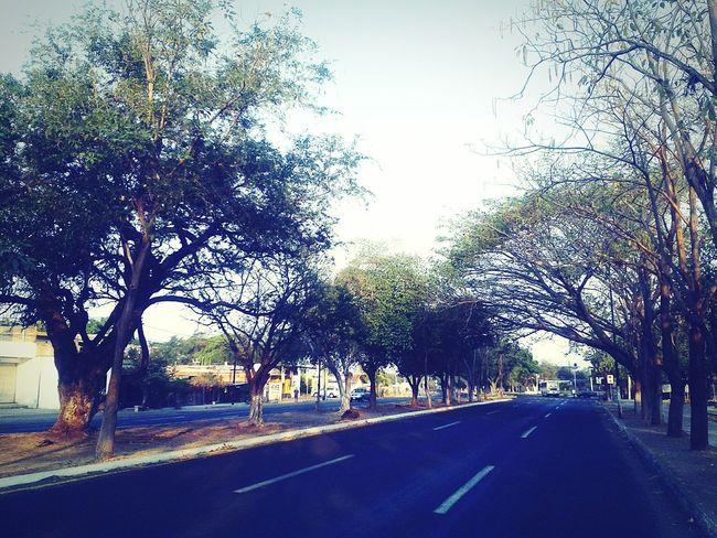 Camino de mañana Road Street Car Sunlight Sky