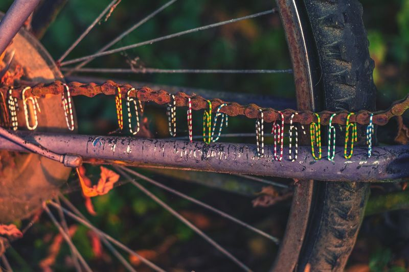 Cropped tire of bicycle with clothespins