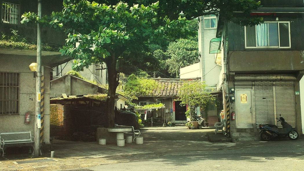 Walking Around Relaxing Rural Scenes Taiwanscape