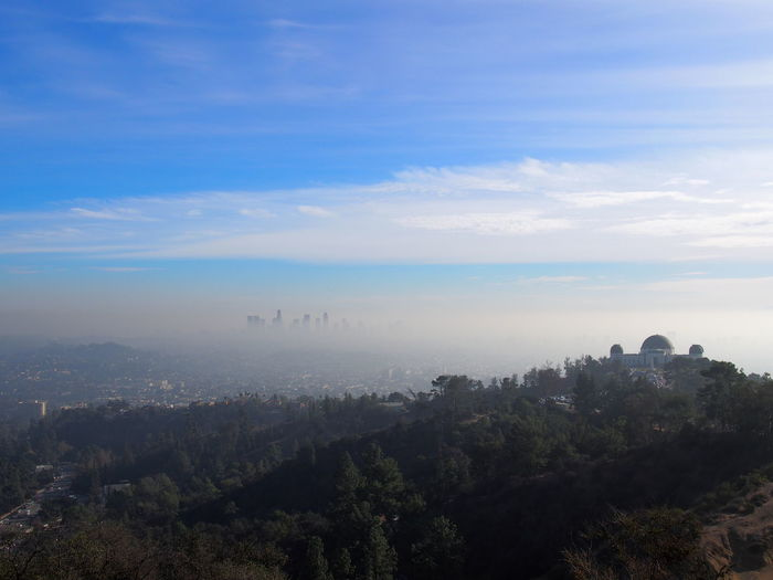 View of Los Angeles from the hills California Cityscape Griffith Observatory Hollywood Los Angeles, California City Cityscape Cloud - Sky Day Environment Fog High Angle View Landscape Mountain Nature No People Outdoors Plant Scenics - Nature Sky Tranquil Scene Travel Destinations Tree