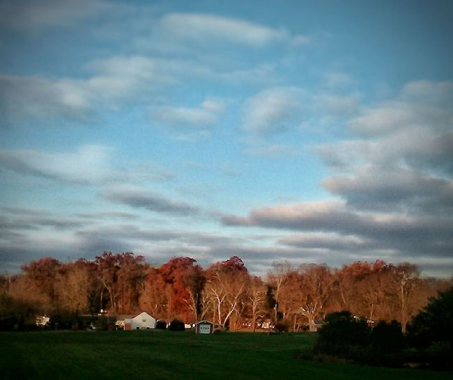 Tree Cloud - Sky No People Tranquility Beauty In Nature Autumn Sky Landscape Outdoors Nature Day Grass EyeEmNewHere Floyds Knobs, IN The Week On EyeEm Beauty In Nature Autumn Breathtaking_beauty Extraordinary Nature The Great Outdoors - 2017 EyeEm Awards Perspectives On Nature Backgrounds