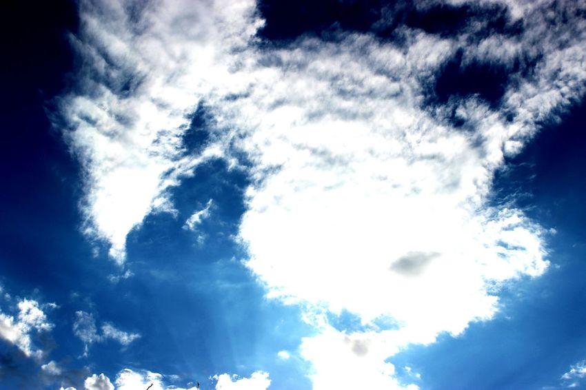 Wolken Wolkenhimmel Wolkenbilder WolkenBewunderer Wolken Und Himmel Blauer Himmel Zuckerwatte Wolkenmeer Wolkenliebe