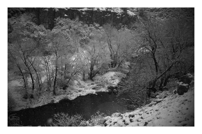 Snowy Rive