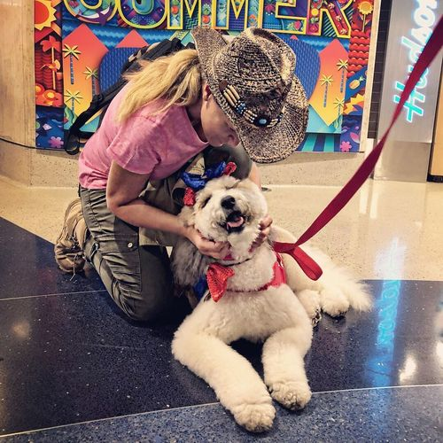 Bonding Confidence  Friendship Loyalty Unconditional Love Pet Pet Therapy Mammal Domestic Animals Canine One Animal Dog Domestic Pets Real People Women Lifestyles Full Length Pet Owner