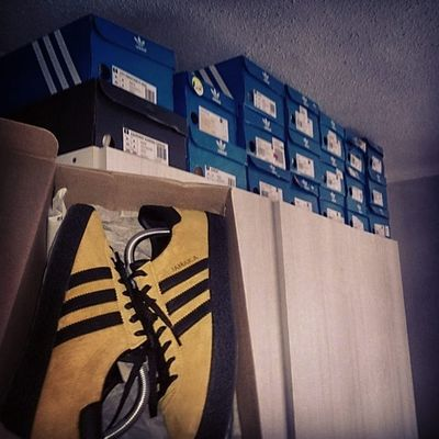 Another RainyDay coming so no Adidasjamaica today Nottodayschoice Adidas Teamtrefoil Adi_gallery