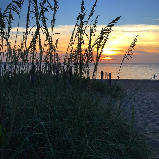 Check This Out Seaoats Sunrise Beach OBX