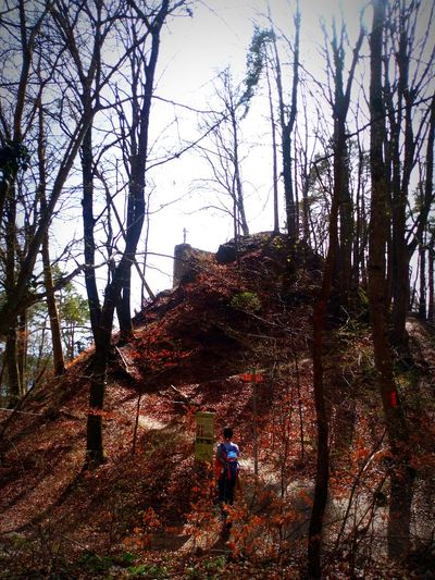 Landscape hill woman Forrest Nature Nature Photography Approaching From Another View Meditation Place
