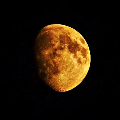 Moon Gold Night Nature