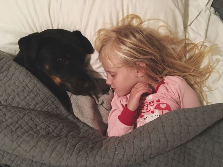 Girl Dog Sleeping Best Friends Bed Blankets Childhood Dreaming Protector Scotts Valley California United States Two Is Better Than One My Favorite Place
