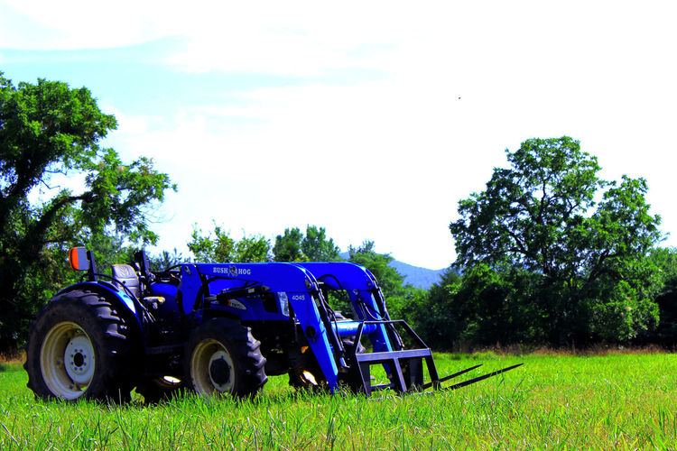 All In Focus Blue Blue Tractor Day Daytime Grassy Green Green Color Growth Growth No People Outdoors Overexposed Peace Peace And Quiet Rural Scene Simple Simple Moment Simple Photography Stationary Summer Tractor Tractor In A Field Tranquil Scene Tranquility