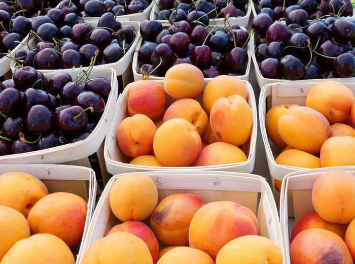 Apricots and Bing cherries at the farmers market Local Food Food Porn Red Farmers Market Port Townsend Apricots Bing Cherry Organic Local