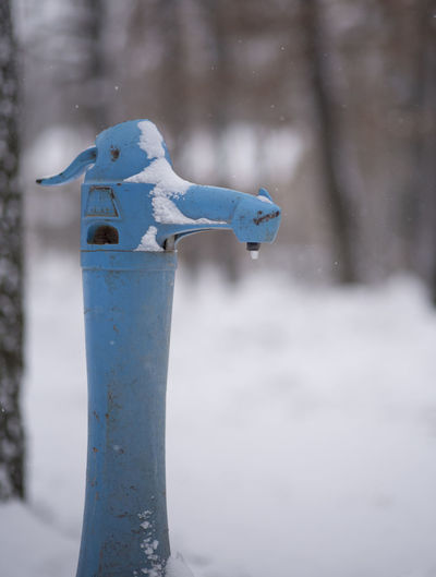 Close-up of faucet during winter