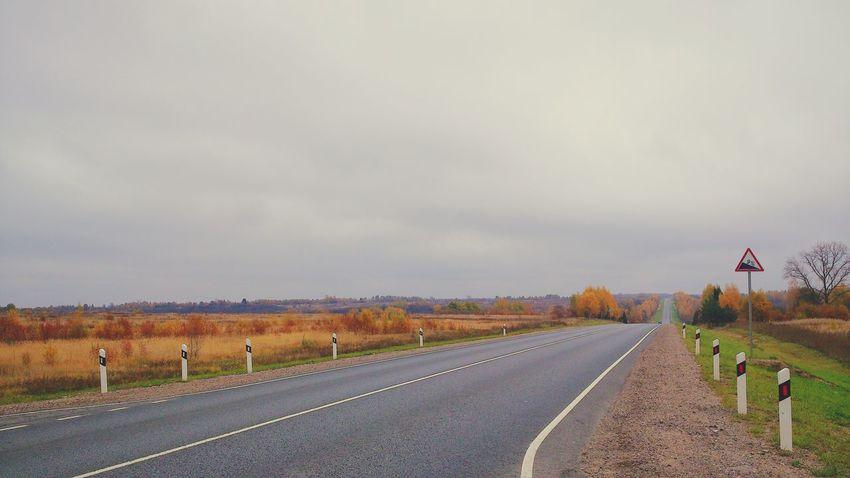 On The Road Autumn Landscape