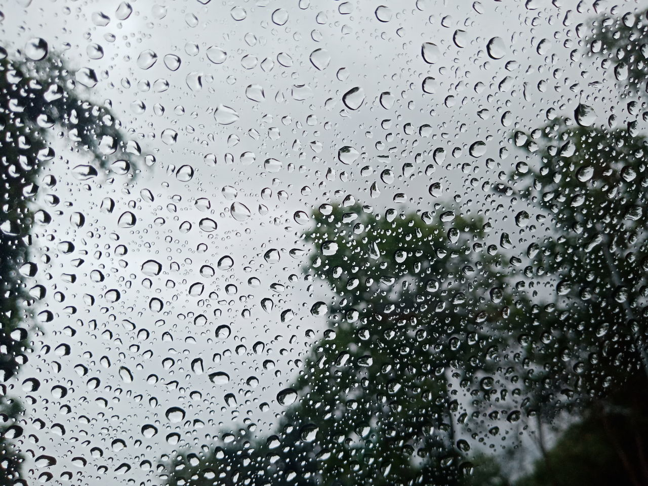 drop, wet, water, rain, window, glass - material, transparent, indoors, raindrop, nature, no people, full frame, day, focus on foreground, rainy season, close-up, monsoon, backgrounds, glass