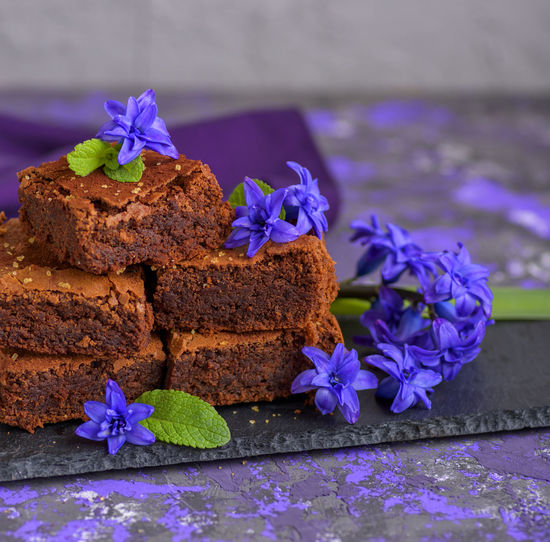 Baked Brownie Cake Chocolate Cake Close-up Dessert Flower Flower Head Flowering Plant Food Fragility Freshness Nature No People Plant Purple Sweet Sweet Food Vulnerability