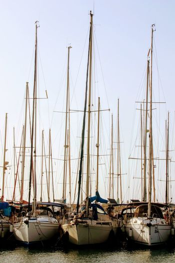 Sailboats moored in harbor against clear sky