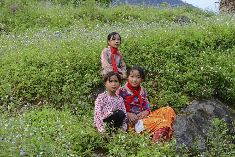 Unidentified young Vietnamese pose for camera with beautiful natural landscape along the Dong Van National Geopark in Ha Giang, Vietnam. Plant Casual Clothing Nature Outdoors Childhood Child Group Of People Girls Females Offspring Women Males  Togetherness Sitting Grass Boys Men Looking At Camera Emotion Innocence Daughter Sister Positive Emotion