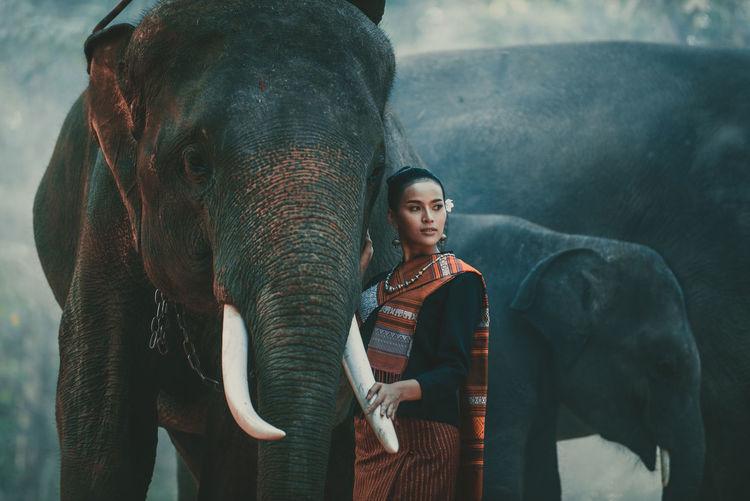 Full length of man standing on elephant