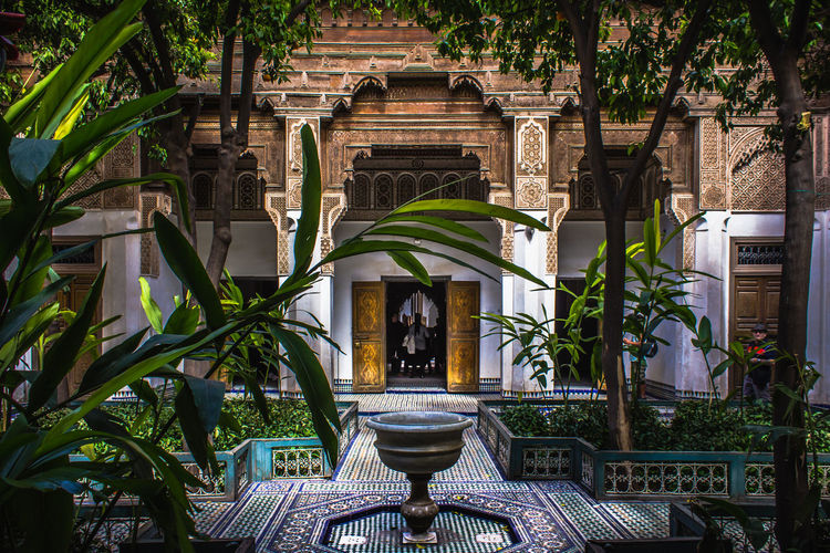 Art of architecture Architectural Column Architecture Architecture Art Building Building Exterior Built Structure Castle City Color Decoration Garden Green Light Marrakech Marrakesh Morocco Old Palace Plant Plants Tourism Traditional Travel Vibes
