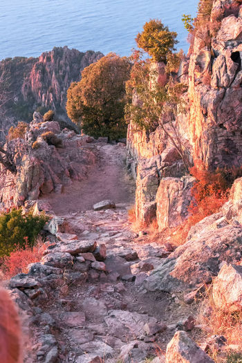 trail Les calanches de Piana Be. Ready. Corsica ❤️ Girolata-bay Les Calanches De Piana Porto To Piana World Natural Heritage Beauty In Nature Day La Scandola Nature No People Outdoors Physical Geography Reddish Granite Rock - Object Rock Formation Scenics Sea Sky Tranquil Scene Tranquility Tree Unesco World Heritage Water West-coast
