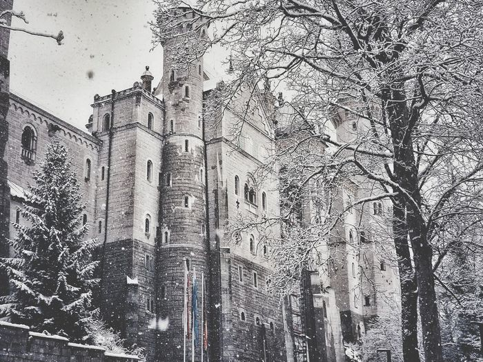Neuschwanstein Fairytale  Fairytalebyidor Fairytalehouse Fairytales Fairytalelife Beautiful Nature Fairytaletown Fairytaledress Fairytaleforest Fairytaletheme Fairytalebyjk Fairytalevillage Fairytalewedding Reviewcocktailwhite Idordiary Love Fairytalegame2 Fairytalegame5 Fairytale_sunset Fairytaleland Fairytalegame4 Reviewfairymask Fairytalegame3 Reviewbiofiber Biofiber Sunset Fairymask Fashion Close-up