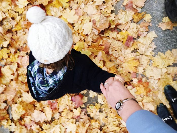 High angle view of woman holding autumn leaves