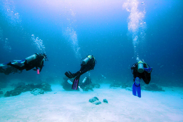 Diving crew at Palau. ASIA Backpacking Crew Diver Divers Micronesia Nature Photography Ocean Palau People Scuba Diver Scuba Diving Scubadiver Scubadivers Scubadiving Sea Seascape Travel Destinations Travel Photography Travelling Travelphotography Wanderlust