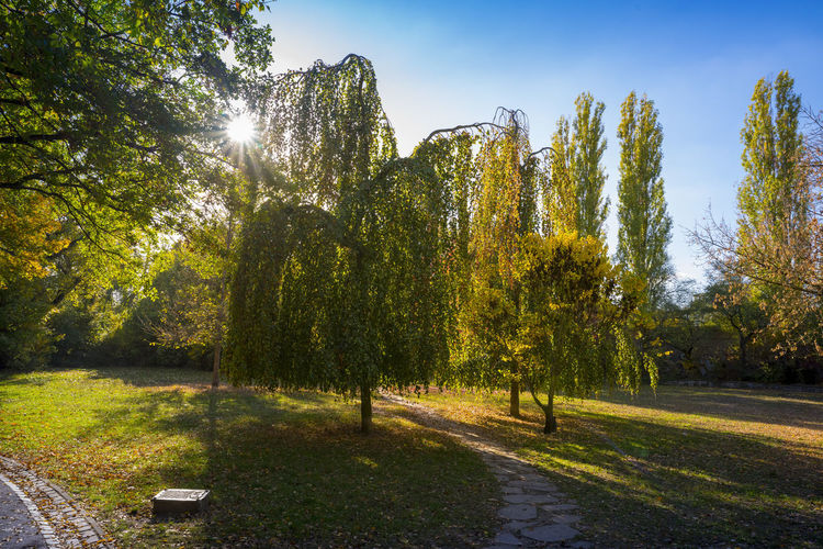 Berlin Park in