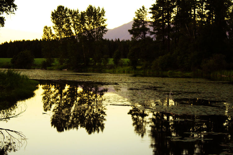 Taking Photos Enjoying Life Photography River View Fishing River Big Sky Country Sunset Farmland Rocky Mountains