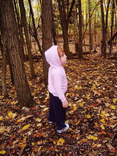 Tree Trunk Forest Tree Full Length Leisure Activity Standing Lifestyles Leaf WoodLand Non-urban Scene Casual Clothing Tranquil Scene Tourism Nature Vacations Tourist Tranquility Beauty In Nature Leaves Day Nature Walk Children WoodLand Fallen Leaf Beauty In Nature