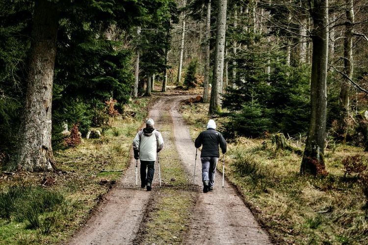 Rear view of two people walking on countryside pathway