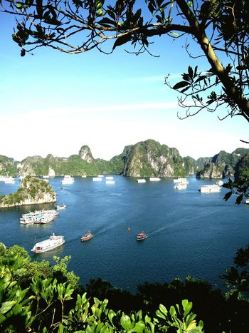 cruise time in south China aea #branches #viewpoint #Ha Long #Vietnam #bay #southchinasea #cruise ⚓ #climb #seaview #boat #vessels #commute #transportation #sailing #bluesea Water Nautical Vessel Clear Sky Blue Sky