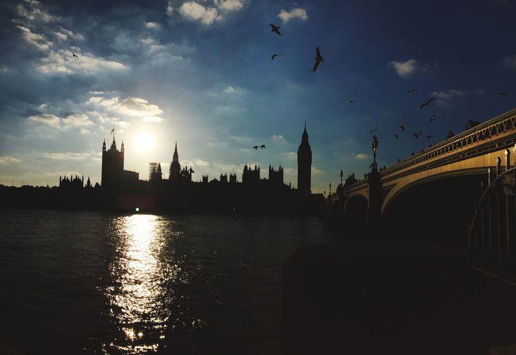London England United Kingdom Weather Birds Sky And Clouds First Eyeem Photo