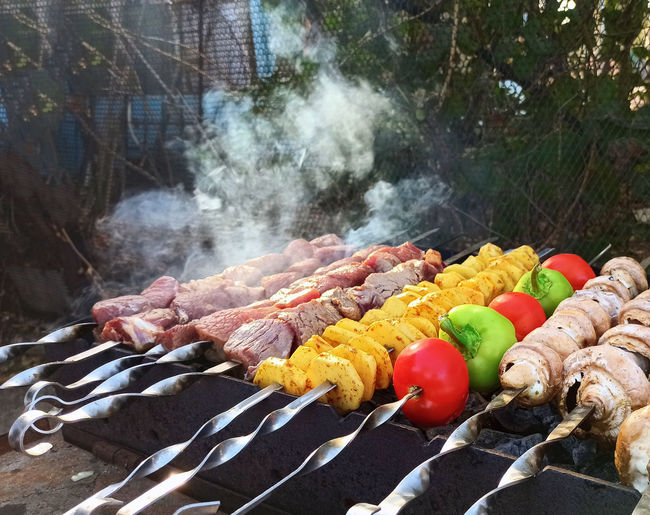 Vegetables and meat kebab on barbecue grill   in the fresh air
