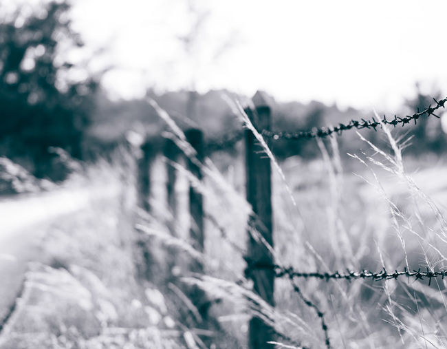 Close-up of barbed wire fence during winter