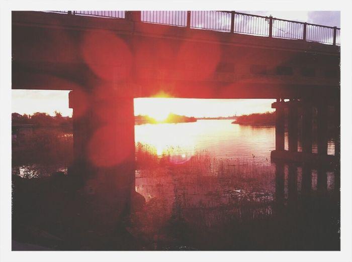 Sunset Bridge Nature Sun