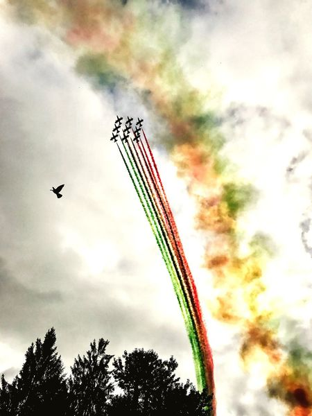 Paragliding Monteavena2017 Frecce Tricolori Low Angle View Sky Cloud - Sky Mid-air Airshow Airplane Air Vehicle Outdoors Military Airplane Tree Transportation Fighter Plane Motion No People Multi Colored Vapor Trail Day Teamwork Nature