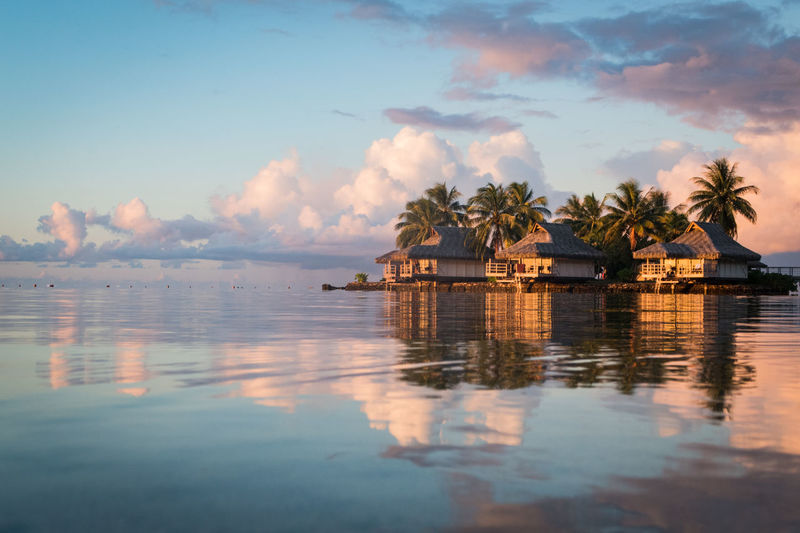 over water bungalows in moorea, french polynesia French Polynesia Pacific Travel Beauty In Nature Built Structure Coconut Palm Tree Idyllic Lagoon Nature No People Over Water Bungalow Palm Tree Plant Reflection Scenics - Nature Sea Sky Tahiti Tranquil Scene Tranquility Travel Destinations Tree Tropical Climate Water Waterfront The Traveler - 2018 EyeEm Awards