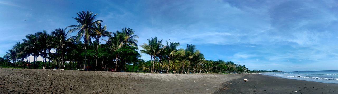 🏝🏝🏝 #costarica Tree Land Plant Cloud - Sky First Eyeem Photo