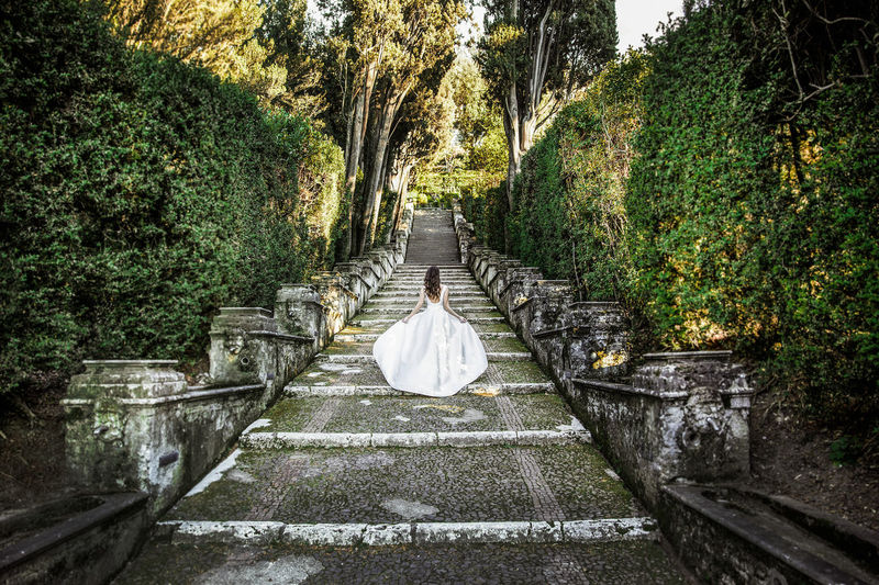 Rear View Of Bride Walking On Steps Amidst Trees