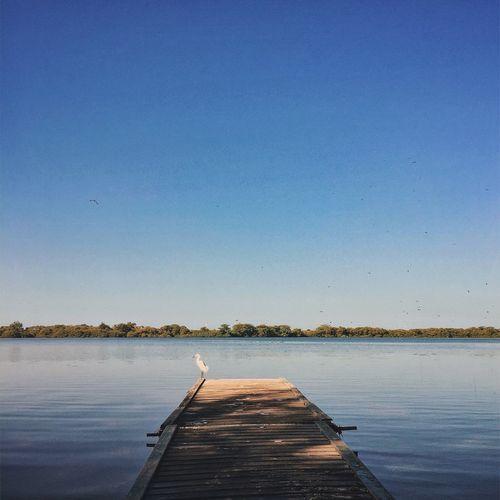 """""""Eu só quero a calmaria de um lugar que sopra o vento da Paz guiando as águas tranquilas."""" Música: Sublime Cantor: Leonardo Gonçalves"""