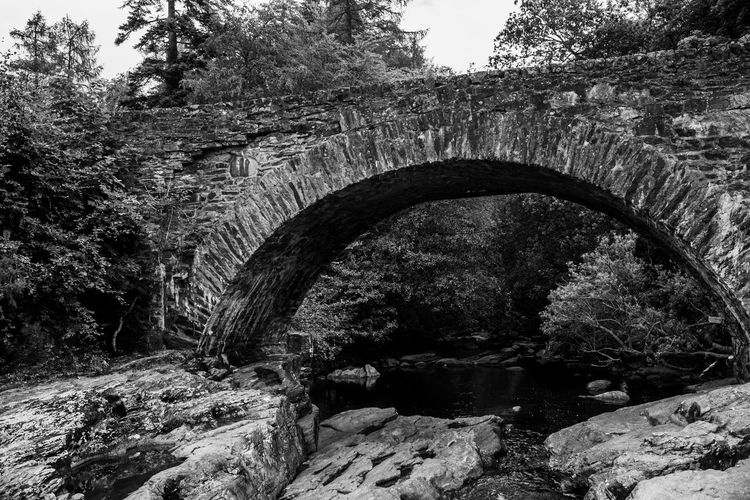 Lomography Neptune Convertible Art Lens System Black And White Blackandwhite Arch Tree Built Structure Architecture No People Water Connection Nature Bridge - Man Made Structure Bridge Plant Day River Solid Arch Bridge Rock Outdoors Rock - Object Forest Flowing Water Flowing Arched