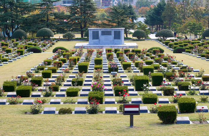 The United Nations Memorial Cemetery in Korea. Graves of UN soldiers from 16 countries during the Korean War. HERO Korea Korea War Peace Soldier USA United Nations Busan Cemetery Communist Cross Dedicated Emotion Government Grass Grave Memorial Military Monument Sadness Spirituality Stone Tombstone War