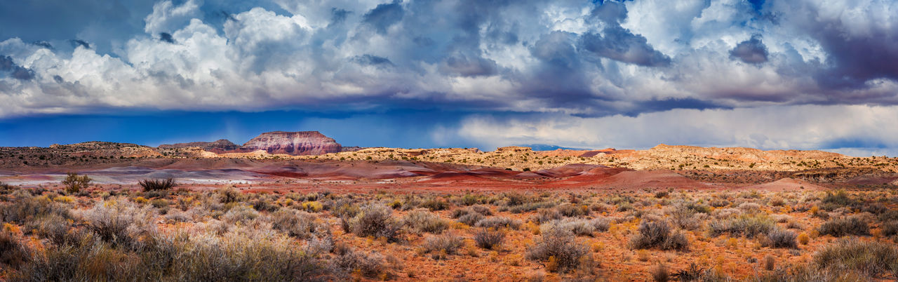 Cathedral Valley Rain Squall, Capitol Reef National Park. A rain squall passes through Cathedral Valley in the Capitol Reef National Park, Utah. These squalls must be taken seriously as flash floods are a common occurrence. Capitol Reef National Park National Park Panorama Rain Squall Storm Travel Utah Arid Climate Climate Climate Change Cloud - Sky Desert Geology Land Landscape Mountain Nature No People Rock Scenics - Nature Semi-arid Southwest  Travel Travel Destinations