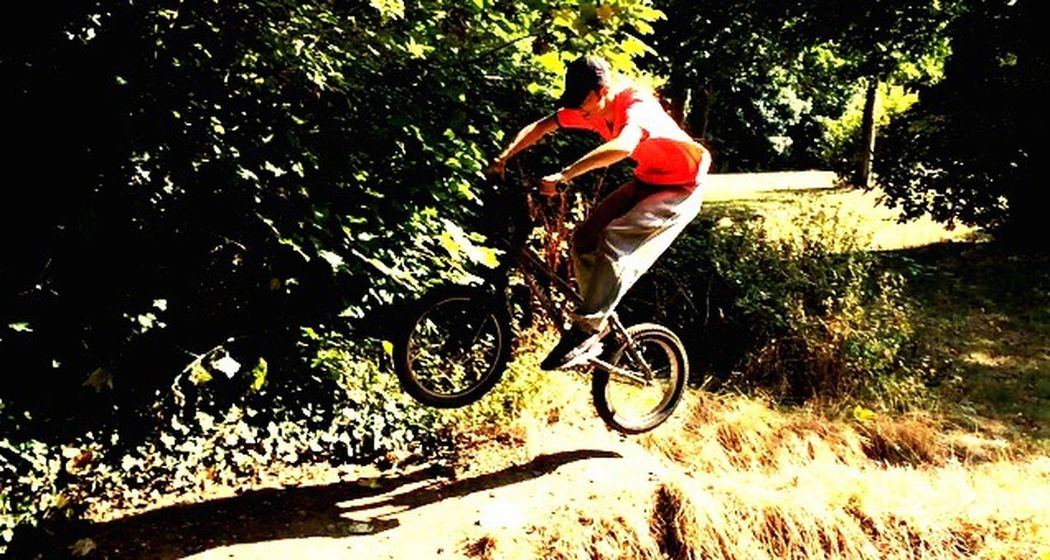Biker Boy Bike Air Time Mate Stunt Jumping Jumpshot Check This Out Tree Growth