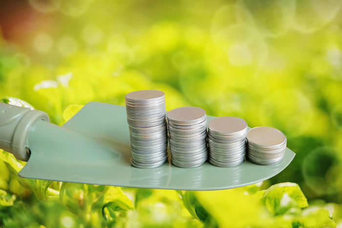 Financial investment. money. saving. coin. Air Bubbles Business Green Growing Investiture Loan  Natural Plant RISK Agriculturist Coin Finance Financial Fund Health Invest Investment Leaf Leaves Money Nature Outlay Planter Save Savings