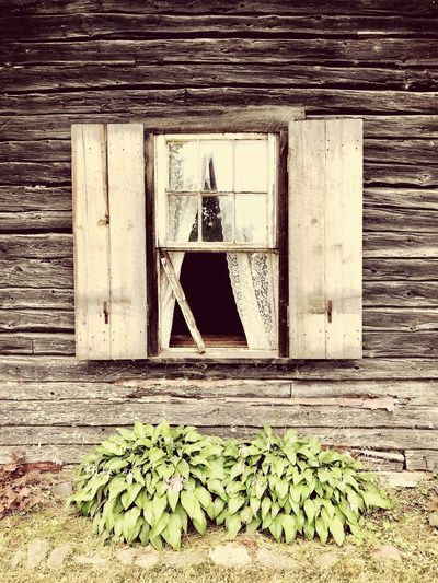 Log Cabin Window Day No People Outdoors High Angle View Nature Sunlight Wood - Material Architecture Built Structure Building Exterior Wall