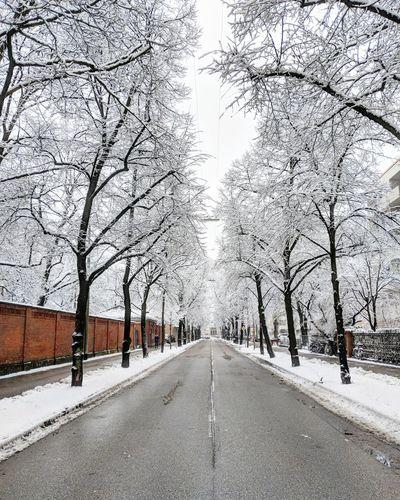 Winter streets.