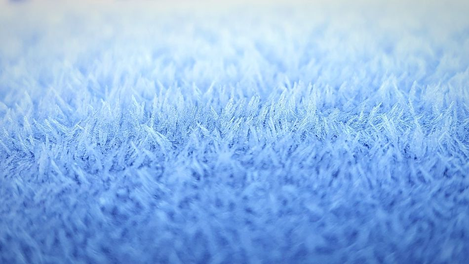 Winter Blue Close-up No People Backgrounds Outdoors Day Nature Snow Beauty In Nature Selective Focus Cold Temperature Fragility Freedom Nature Silent Clean Air